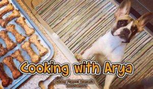 cooking with arya